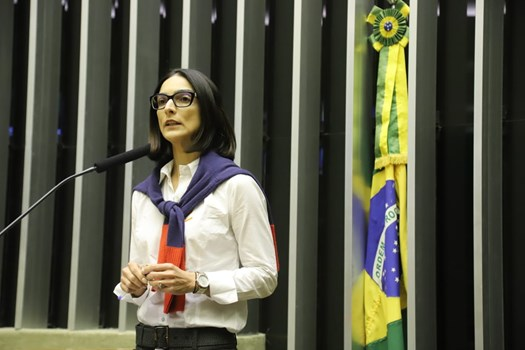 OAB participa de Comissão Geral para debater nova lei de licenciamento ambiental