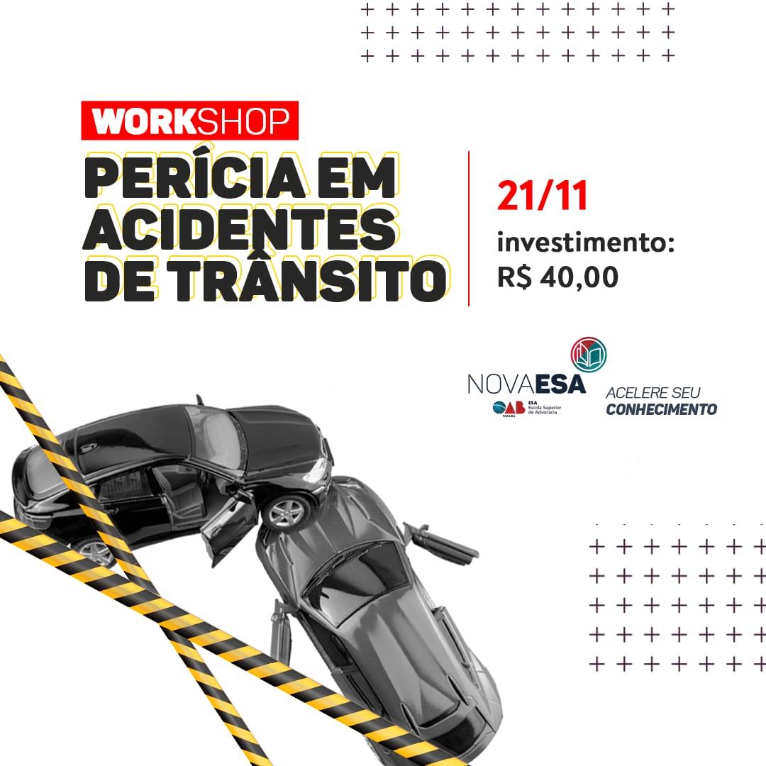 Comissão de Criminologia e Estudos Sobre Violência realiza workshop de perícia em acidentes de trânsito